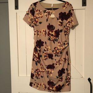 PinkBlush Medium maternity floral dress
